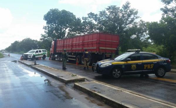 PRF apreende caminhão com 12 toneladas de madeira ilegal no Sul do Piauí