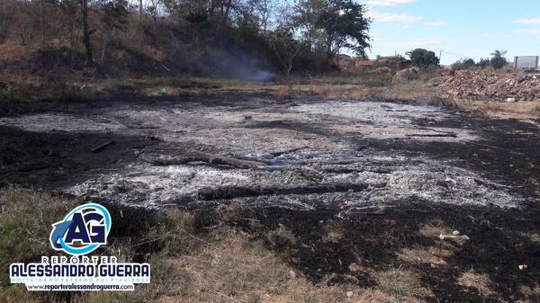 Fogo em lixo causa incêndio em área de vegetação em Corrente
