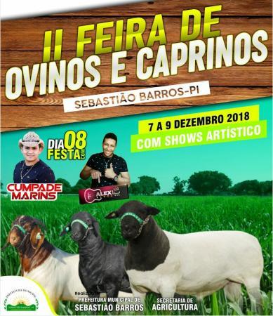 Sebastião Barros promove a II feira de ovinos e caprinos de 7 a 9 de dezembro