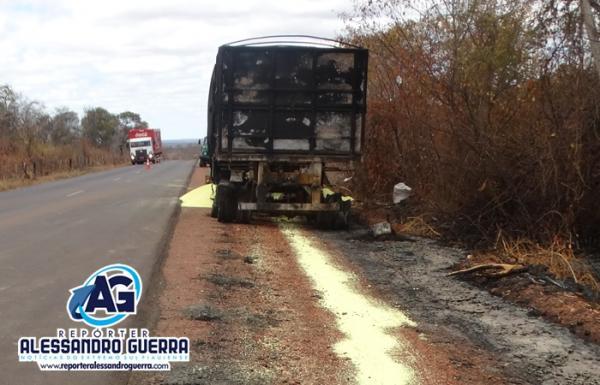 Carreta com enxofre pega fogo na BR- 135, próximo a Cristalândia